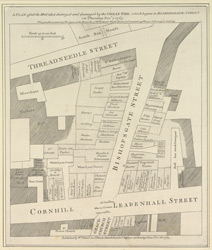 A plan of all the houses destroyed and damaged by the great fire which began in Bishopsgate Street on Thursday Novr. 7, 1765